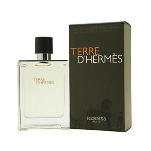 Hermes Terre d'Hermes EDT for Him 100mL