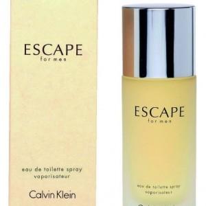 Calvin Klein Escape Eau De Toilette for him 100 ml